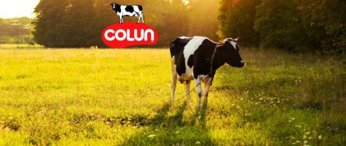 Puntos para Colun made in Chile